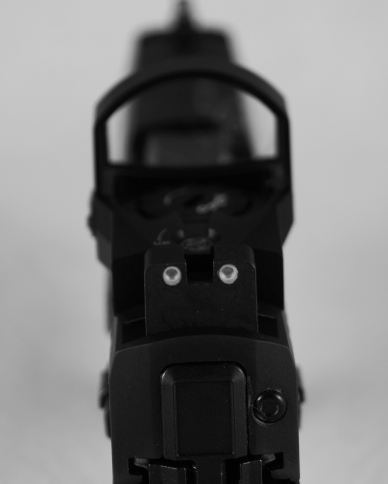 Rear sight1
